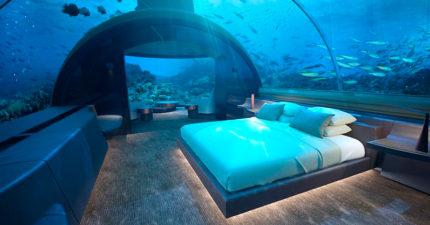 全球首家「海底渡假村」將推出 和魚兒共眠上層更驚人!