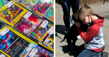 愛犬生病!8歲男孩忍痛「賣珍藏寶可夢卡」募款 官方感動送上「驚喜大禮」